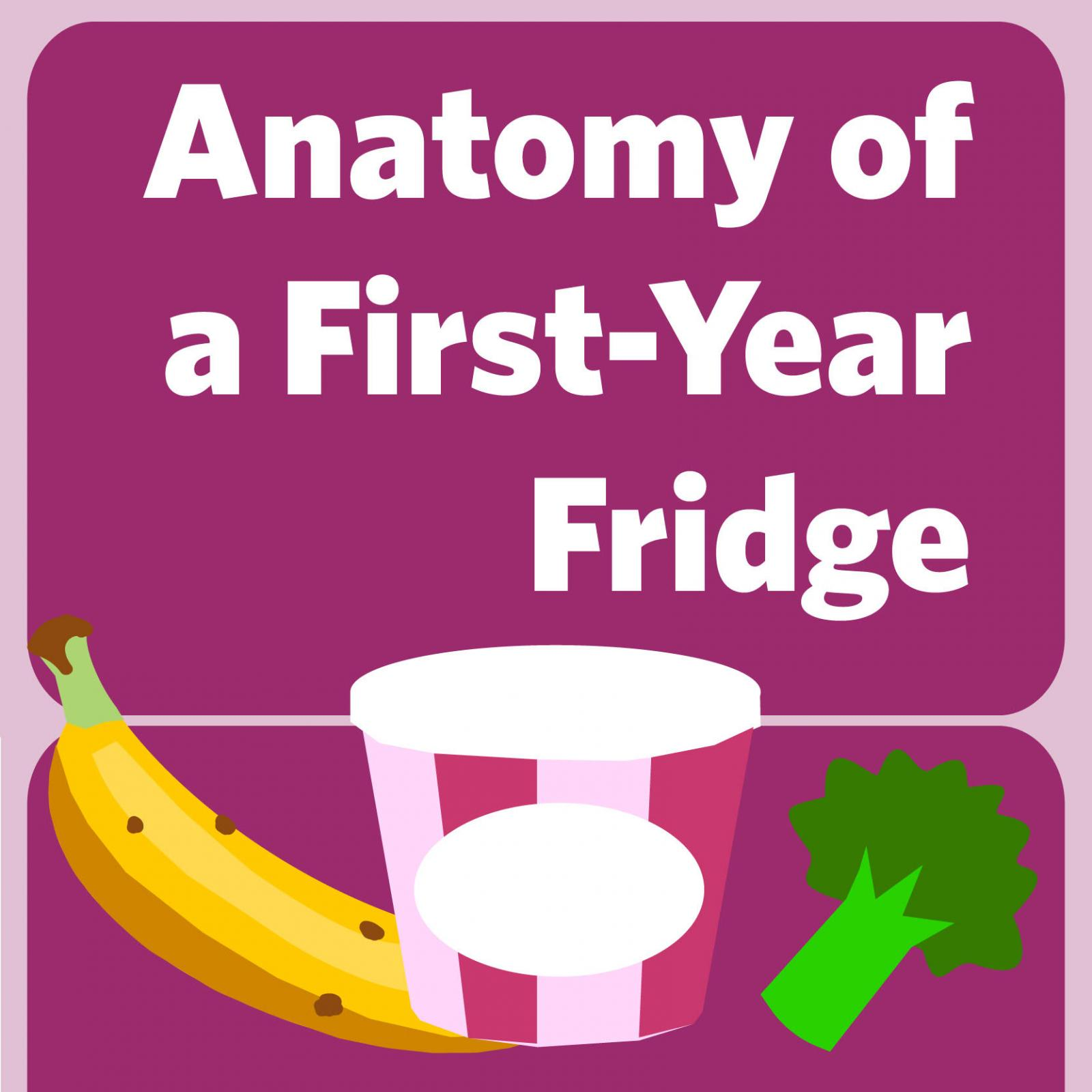 Anatomy of a First-Year Fridge - Columbia Daily Spectator